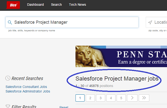 Salesforce Project Manager Jobs
